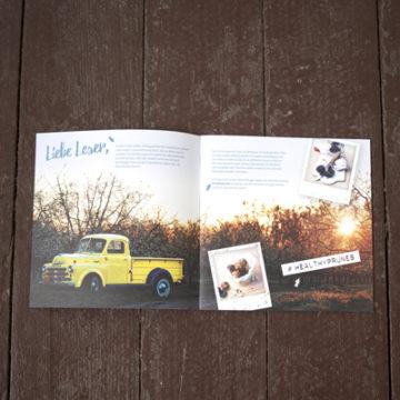 Blogger-Broschüre als Booklet, Design von Gipfelgold